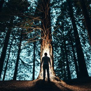 Man using lighted hat in forest